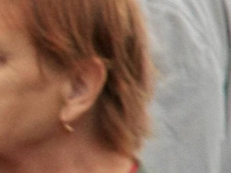 Москвичи стали откусывать друг другу уши в музейных очередях