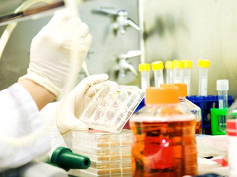 Уголовники смогут оспорить свой анализ ДНК