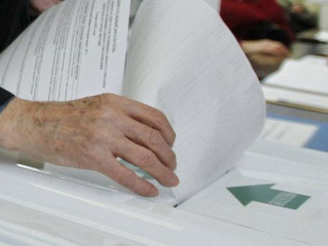 Выборы в Видном месте