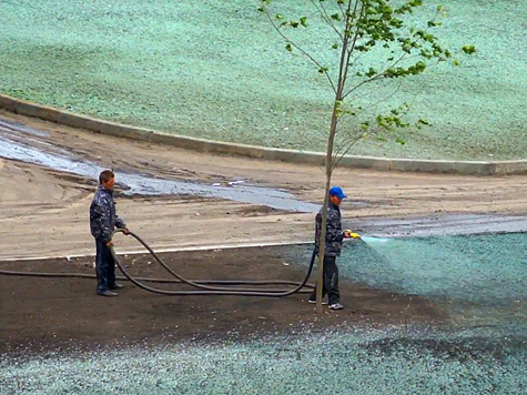 В Интернете активно обсуждают видео с покраской травы к приезду Путина в Саранск