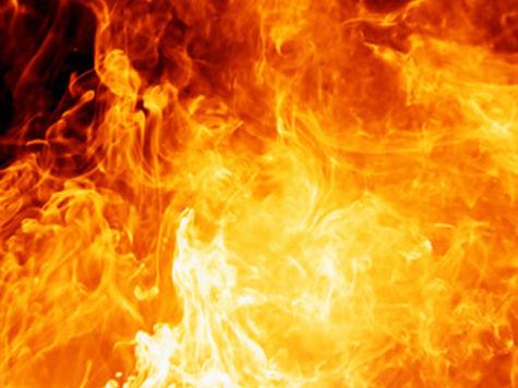 В Подмосковье мать двоих детей погибла при взрыве в овощехранилище