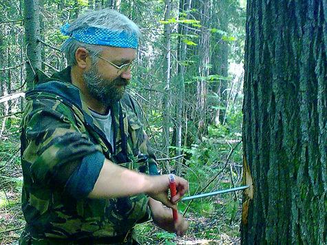 Пермский филиал «Рослесинфорг» –  надежный компас  в лесах Пермского края