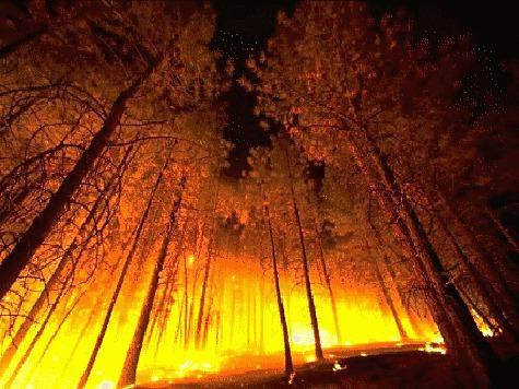 Как кислород питает пожары времен