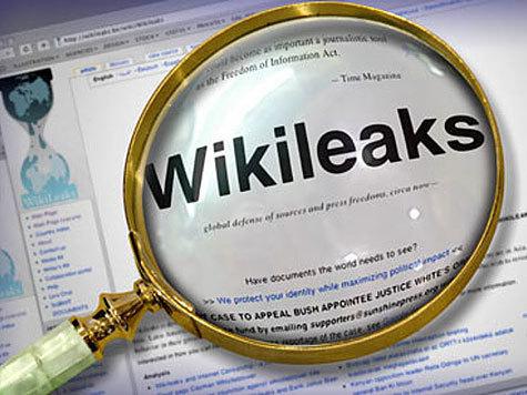 Шведские пираты считают основателя WikiLeaks единомышленником