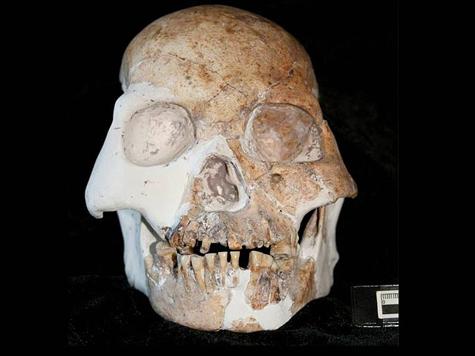 Найден предок первого эмигранта?