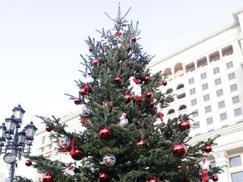 Таможня будет олицетворением Рождества