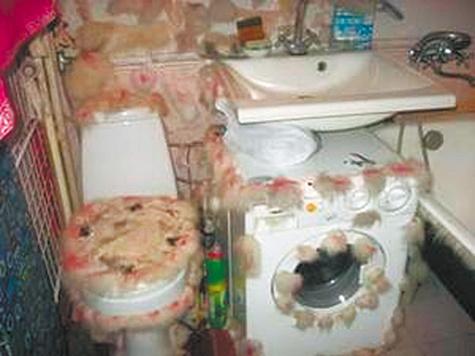 """В День туалета """"МК"""" проинспектировал самые необычные московские санузлы"""