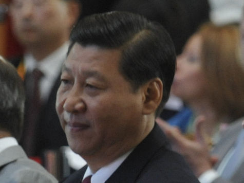 К саммиту БРИКС председатель КНР Си Цзиньпин подготовится в России