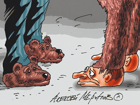 """Голова """"медведя"""" может раздвоиться"""
