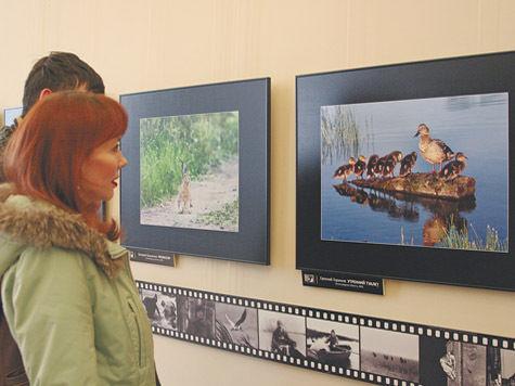 Клуб фотоохотников отметил 50 лет вСанкт-Петербурге