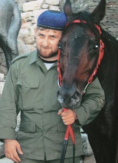 """""""МК"""" посчитал, во сколько обходятся Рамзану Кадырову его элитные жеребцы"""