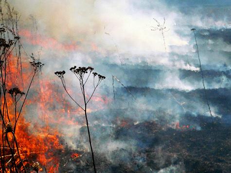 Граждане бдят, опасаясь пожаров