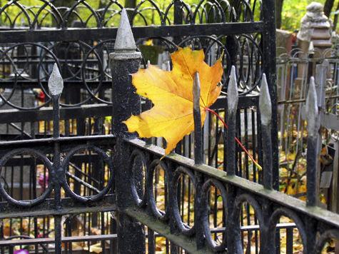 Софринское кладбище примет усопших соседей