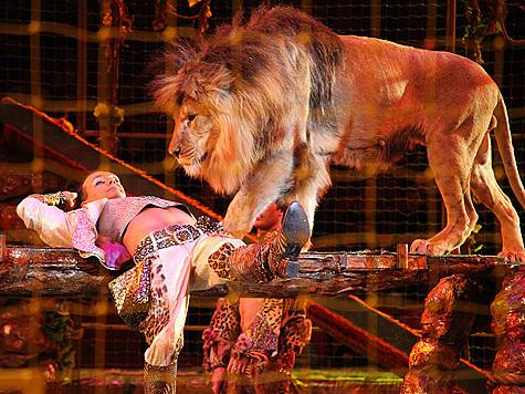 Гии Эрадзе первому удалось совладать на арене с целым зоопарком