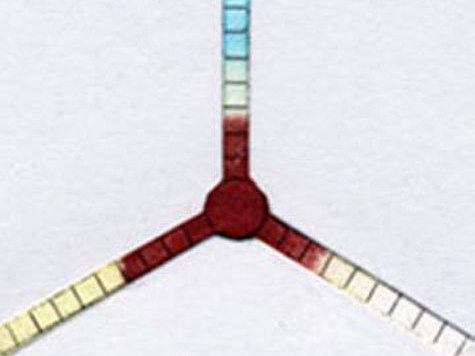 Самостоятельно определять свою группу крови в домашних условиях сможет в ближайшем будущем любой желающий