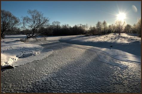 В Дмитровском районе все-таки будут строить сафари-парк. В последние годы инициатива явно притормозила из-за нерешительности китайских партнеров, которые выступали главными соинвесторами проекта