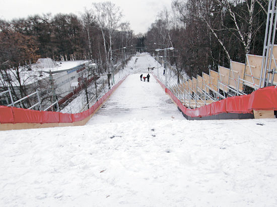 Парку Горького подкинут лаванды