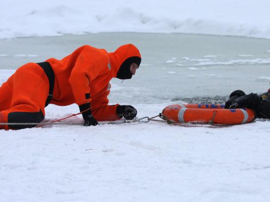 Разыгравшийся пес обрек двух мужчин на ледяную пытку