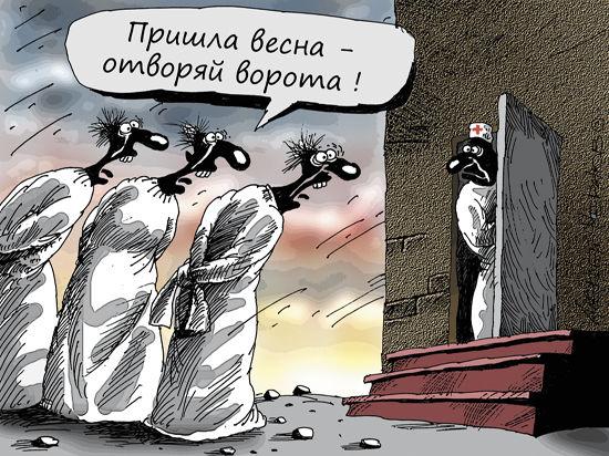 Бешенство Ж. Лидер ЛДПР жестко изнасиловал общество