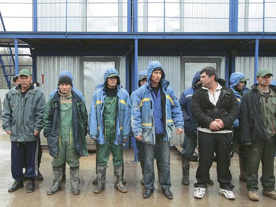 Квоту на привлечение иностранных рабочих выдавать на местах разумнее, считают в Ленинском районе