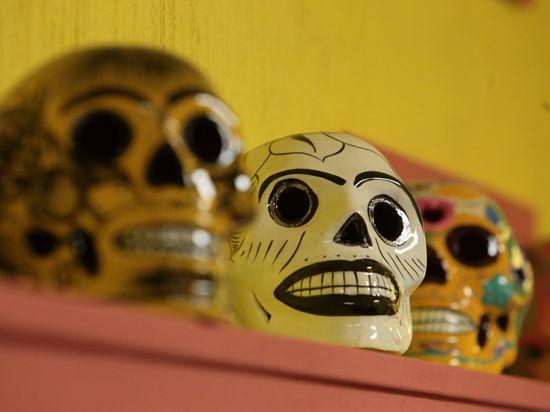 Мрачный музей уже стал любимым местом готов