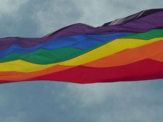 Россия ограничила усыновление сирот в страны с легальными однополыми браками