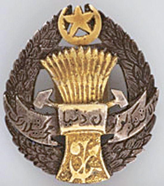 Неизвестный орден Ленину