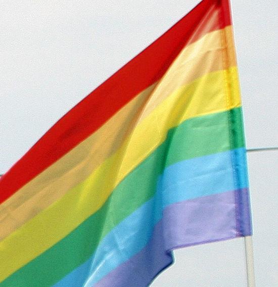 Депутаты Мосгордумы не поддержали закон о пропаганде нетрадиционных сексуальных отношениях среди подростков