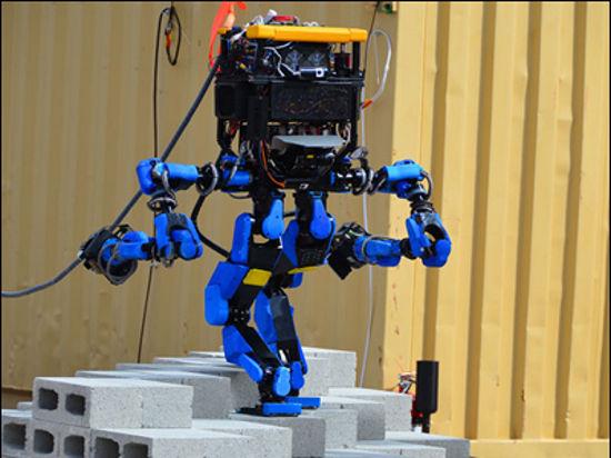 Международная битва роботов прошла под знаком неожиданной победы