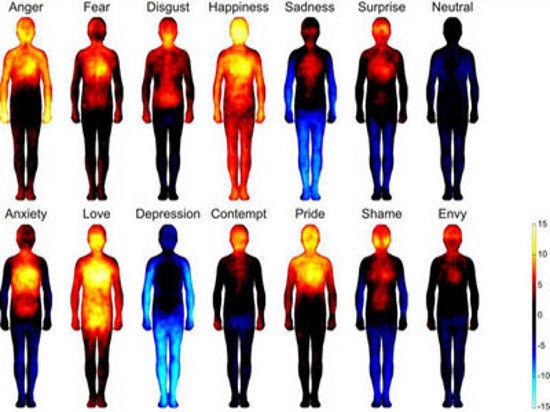 Все люди одинаково чувствуют счастье или депрессию