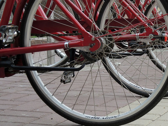 Сотрудникам мэрии по месту службы соорудят велостоянку