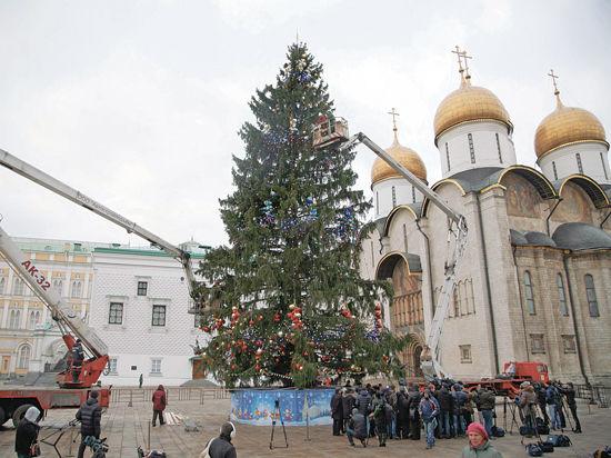 Самую-самую елку доставляют в Кремль из Подмосковья последние семь лет