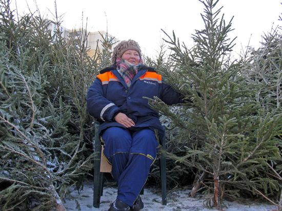 В Москве заработали 250 елочных базаров