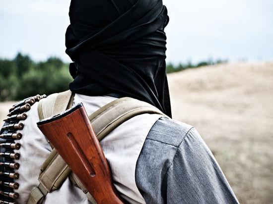 Турция опровергает информацию о помощи экстремистам