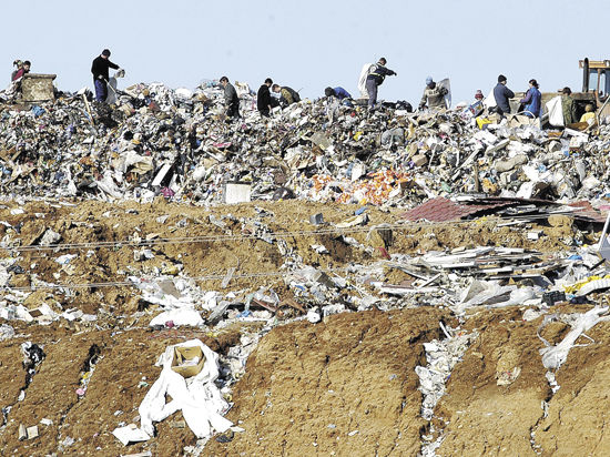 О том, как Чехов мусор поделил
