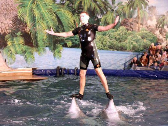 В Хабаровск приплыли дельфины