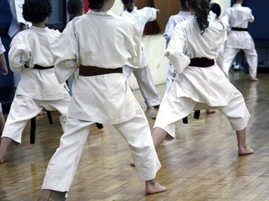 В столичных школах предлагают ввести уроки дзюдо