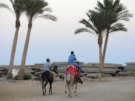 Власти Египта сомневаются в подлинности угрозы иностранным туристам