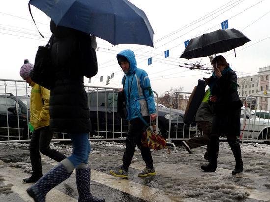Московский февраль может войти в тройку самых теплых с начала века