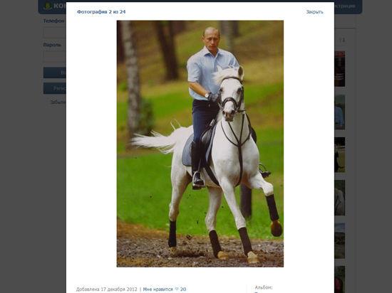Скакуны президента: от ахалтекинца до лошади Пржевальского
