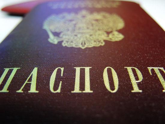 На повозку пустят только с паспортом