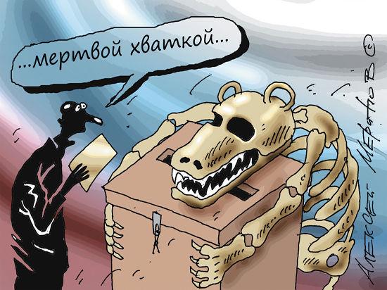 Жители Волоколамска теперь могут выбирать «Родину»