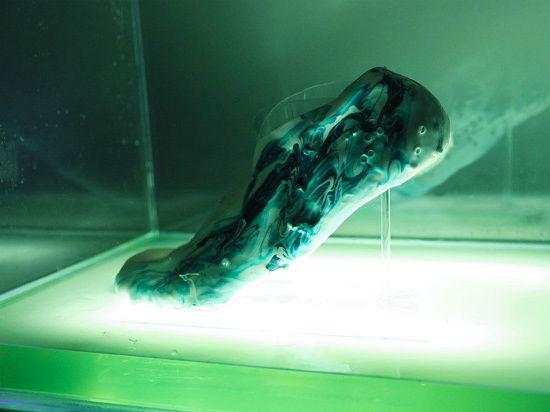 Придуманы живые протоклеточные кроссовки с возможностью самовосстановления