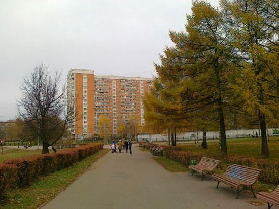 Московский ноябрь побил все рекорды