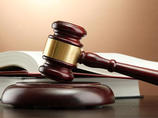 Мосгорсуд приговорил к 15 годам убийцу младенца