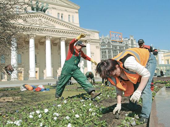 В Москве грядет цветочная революция