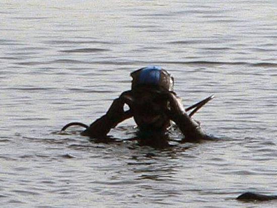 Водолазы достают из-под воды только трупы, выживших на затопленном южнокорейском пароме пока найти не удалось