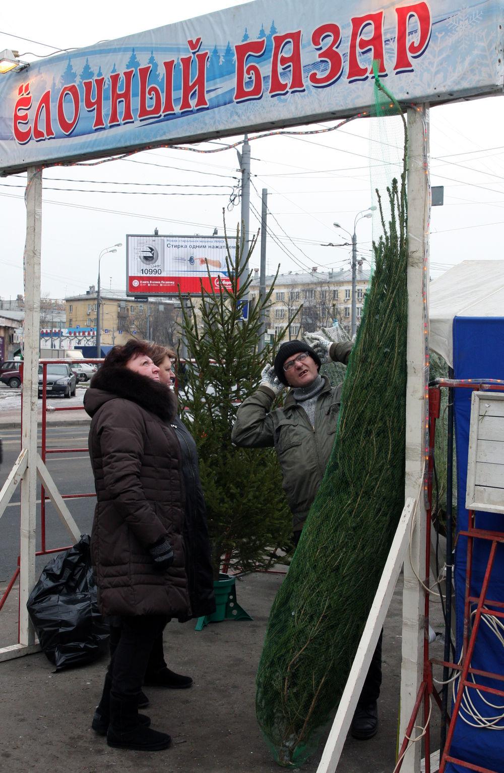 В Москве открылись елочные базары