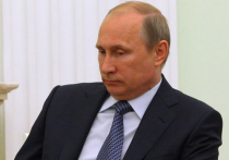 """Путин записал обращение по ситуации с """"Боингом"""": """"Никто не должен использовать трагедию в узкокорыстных целях"""""""