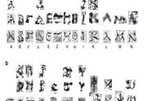 Ученые прочли испепеленные Везувием древние свитки из Геркуланума